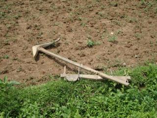 Garo plow.